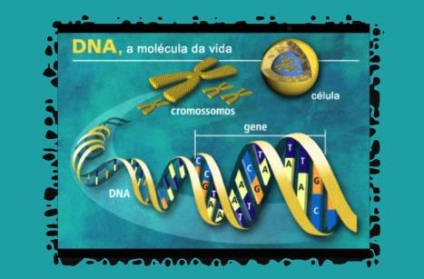 14 de Abril - Projeto Genoma Humano