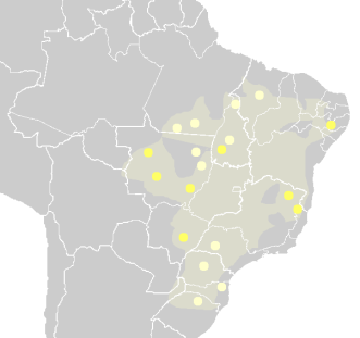 21 de Abril - Línguas jês propriamente ditas (amarelo-claro) e outras línguas macro-jês (amarelo escuro) na atualidade. A área sombreada indica aproximadamente a provável área de