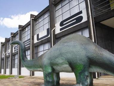 15 de Maio - Monte Alto (SP) - Museu de Paleontologia.