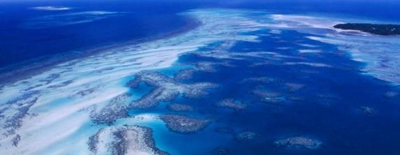 8 de Junho - 1992 – É celebrado o primeiro Dia Mundial dos Oceanos coincidindo com a ECO-92 que ocorria no Rio de Janeiro.