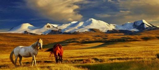 11 de Julho – 1921 – Independência da Mongólia pela República da China.