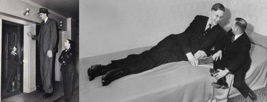 15 de Julho - 1940 — Robert Wadlow, pessoa mais alta da História, que media 2,72 metros de altura (n. 1918).