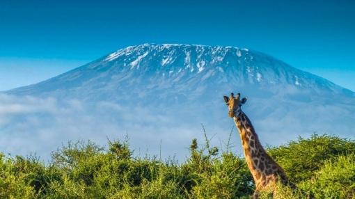 2 de Julho - 1927 – Uma mulher escala pela primeira vez o monte Kilimanjaro.