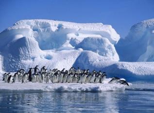 21 de Julho - 1983 – É atingida na Antártica a menor temperatura já registrada no mundo, até os dias de hoje, de -89,2 °C.