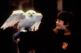 23 de Julho - Daniel Radcliffe - 1989 – 28 Anos em 2017 - Acontecimentos do Dia - Foto 15.