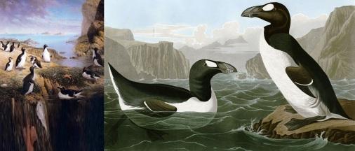 3 de Julho - 1844 – O último casal de Arau-gigante é morto.