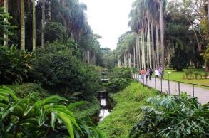 12 de Agosto – 1991 — Criado o Parque Estadual Fontes do Ipiranga no município de São Paulo, onde foi proclamada a Independência do Brasil.