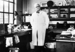 6 de Agosto – Alexander Fleming - 1881 – 136 Anos em 2017 - Acontecimentos do Dia - Foto 10.