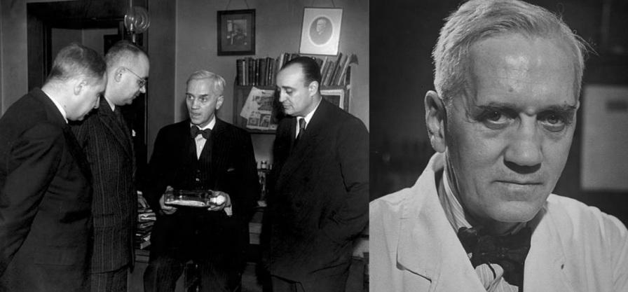6 de Agosto – Alexander Fleming - 1881 – 136 Anos em 2017 - Acontecimentos do Dia - Foto 12.
