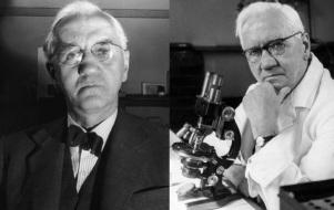 6 de Agosto – Alexander Fleming - 1881 – 136 Anos em 2017 - Acontecimentos do Dia - Foto 8.