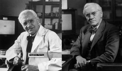 6 de Agosto – Alexander Fleming - 1881 – 136 Anos em 2017 - Acontecimentos do Dia - Foto 9.