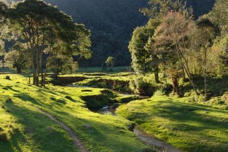 2 de Setembro – Parque Nacional da Serra do Itajaí — Blumenau (SC) — 167 Anos em 2017.