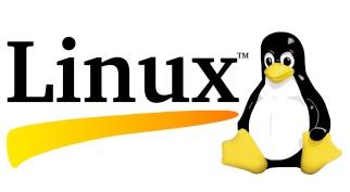 5 de Outubro - 1991 — Linus Torvalds anuncia a primeira versão oficial do sistema operacional Linux.